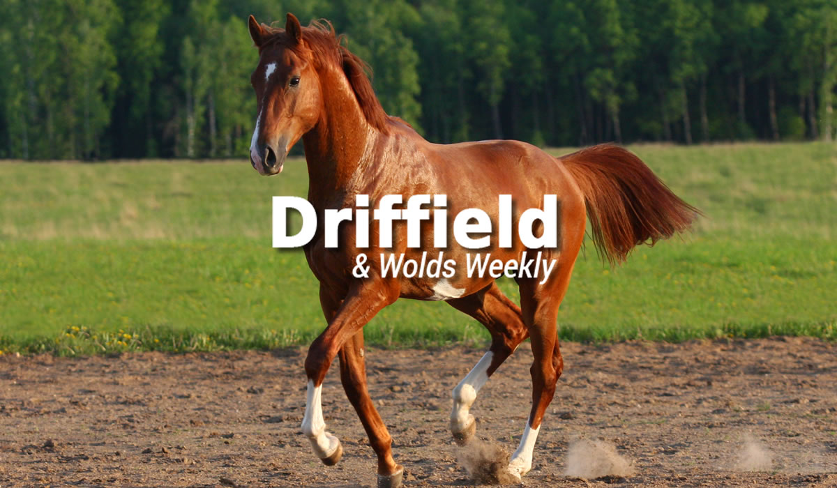 Driffield Wolds Weekly March Article Featured Image