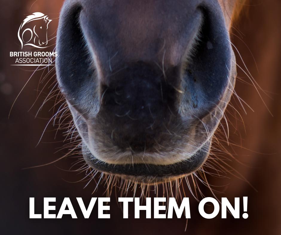 Leave them on!